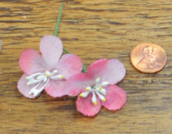 Apple Blossom - Pink - Synthetic