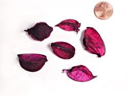 Cotton Petals - Pink
