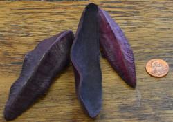 Triangle Pods - Purple - 1lb