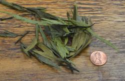 Valia Fern - P-D Olive Green