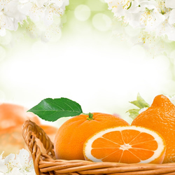 Capri Seaside Citrus (our version of BBW) Fragrance Oil