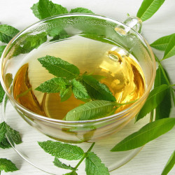Lemon Verbena (all natural) Fragrance Oil
