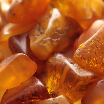 Amber (all natural) Fragrance Oil