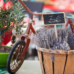 French Market (our version of) Fragrance Oil