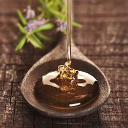 Honey (our version of) Fragrance Oil