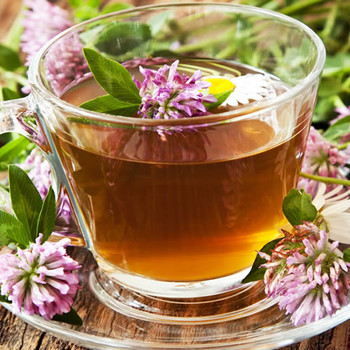 Red Clover Tea Fragrance Oil