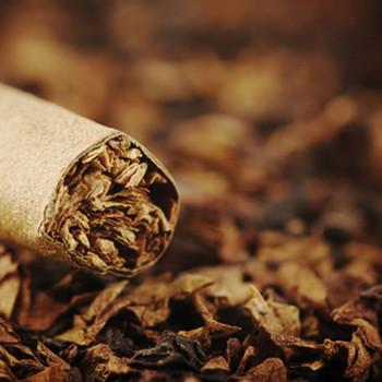 Tobacco Vanilla Fragrance Oil & Tobacco Vanilla Fragrance Oil | Buy Wholesale From Bulk Apothecary