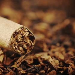Tobacco Vanilla Fragrance Oil