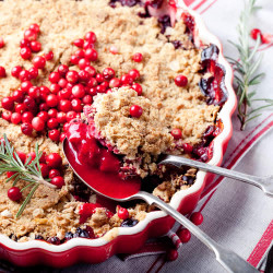 Cranberry Cobbler PF Fragrance Oil