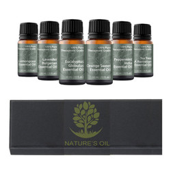 Top 6 - (10ml) Essential Oil Aromatherapy Starter Kit