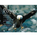 The Eagle: Power
