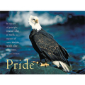 The Eagle: Pride