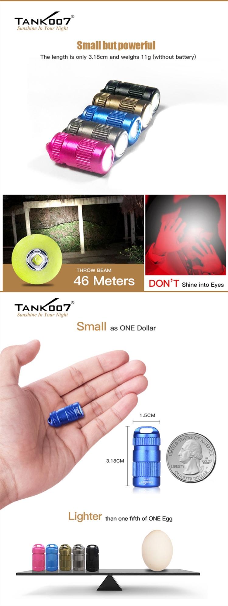 4-small-torch.jpg
