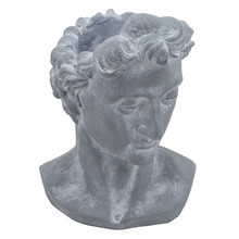"RESIN, 21""H APOLLO BUST, GRAY"