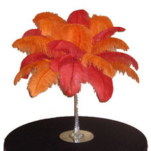 "6 ""Fire & Ice"" Centerpieces @ 139.95/pc"