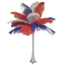 """America"" Ostrich Feather Centerpiece"
