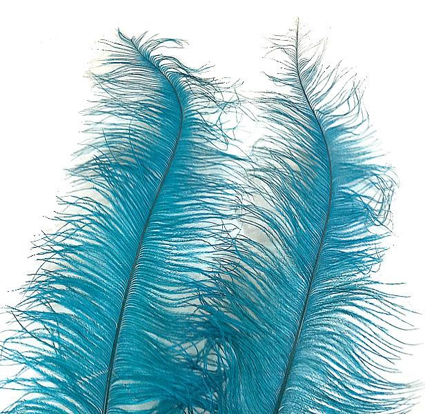 ostrich spads