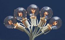 Case of 12 Globe Light String Set Clear On White - 25ft, 25 light