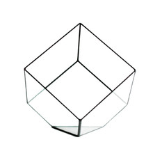 Big Black Tilted Cube Geometric Glass Terrarium, Heptahedron - 4 Pieces