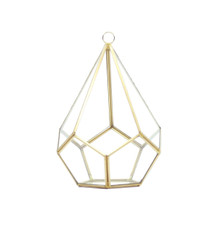 Gold Tear Drop Geometric Glass Terrarium, Undecahedron - 6 Pieces