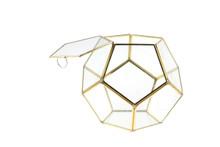 Medium Gold Prism Geometric Glass Terrarium, Dodecahedron - 4 Pieces