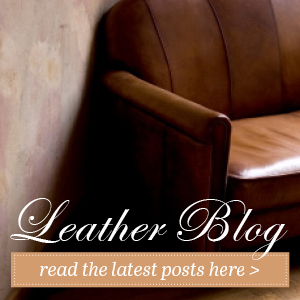 Leather Cleaner And Care Products Diy Leather Restoration