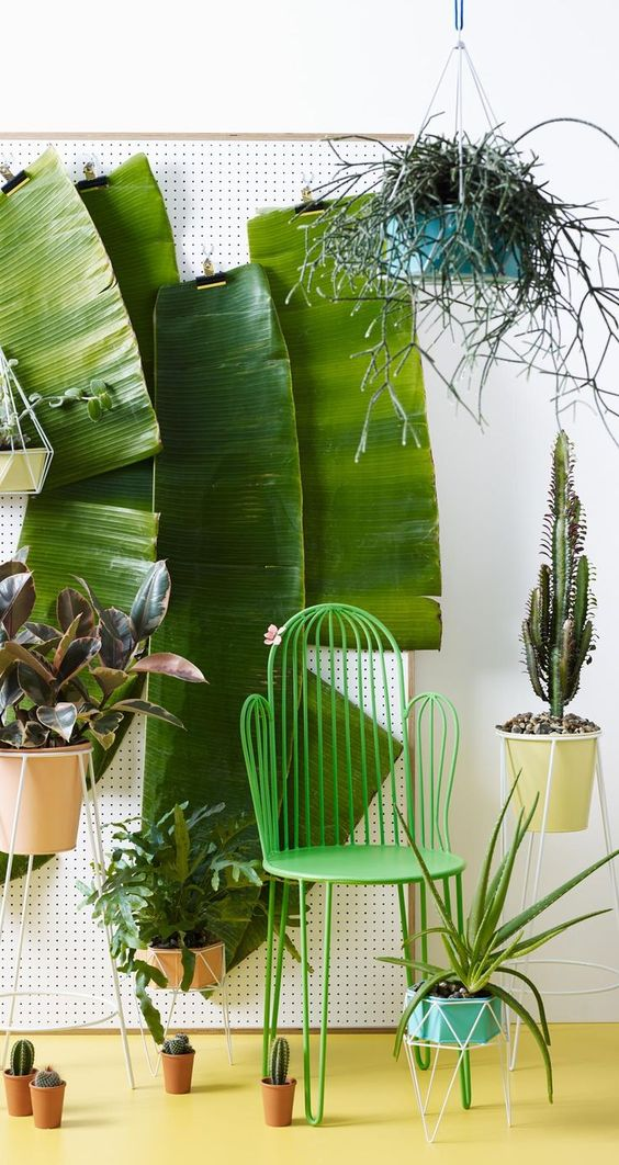 Tropical Home Decor | Must-Have Bins