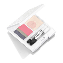 CHICCA Flawless Glow Lid Texture Eye Shadow ~ EX04 Pink Iris ~ 2018 Spring Limited Edition