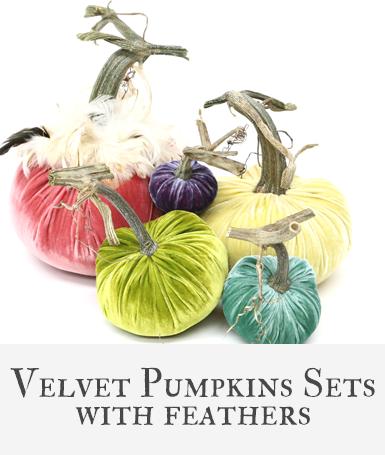 Hot Skwash Velvet Pumpkin Sets with Feathers