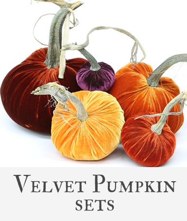 Hot Skwash Velvet Pumpkin Sets