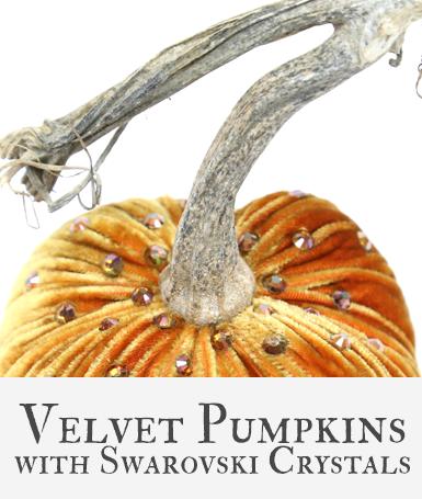 Hot Skwash Velvet Pumpkins with Crystals