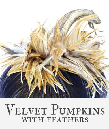 Hot Skwash Velvet Pumpkins with Feathers