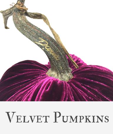 Hot Skwash Velvet Pumpkins