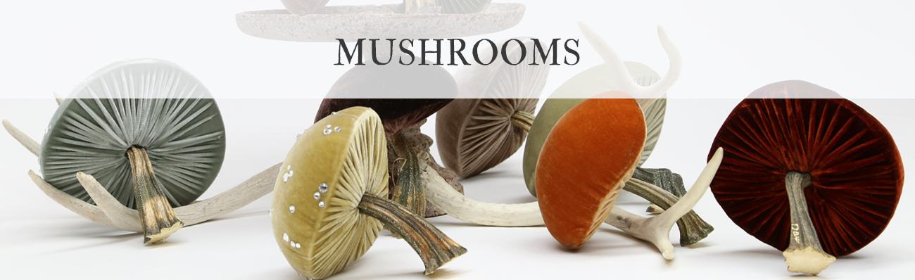 Hot Skwash Velvet Mushrooms