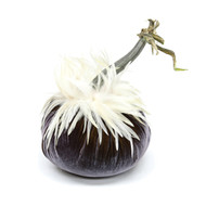 Graphite  Velvet Pumpkin with White Ginger Saddle Feathers
