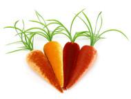 Carrot Bunch - Set of 4 Velvet Carrots
