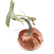 Panne Velvet Pumpkin - Copper