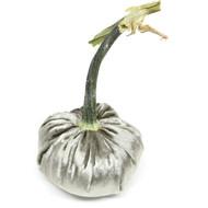 Panne Velvet Pumpkin - Platinum