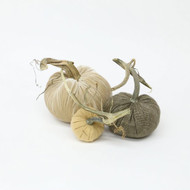 Cashmere Pumpkin Trio - Luxe Neutral