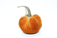 "Jumbo 11"" Velvet Pumpkin with Swarovski Crystals"