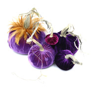 "Includes an 8"" Orchid with a Red feather collar, 6"" Violet, 5"" Orchid, 4"" Violet and 3"" Magenta velvet pumpkin."
