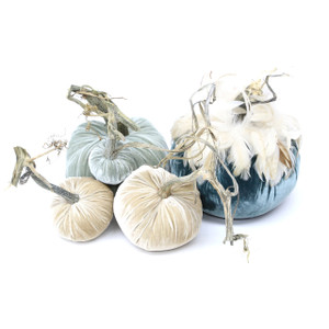 "The Coastal Pumpkin Large set with Feathers includes a 8"" Wedgewood with feather collar, 6"" Spa, 5"" Bone, 4"" Bone and 3"" Spa velvet pumpkin."