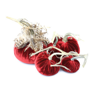 "The Reds Pumpkin Large set with Feathers includes a 8"" Cherry with feather collar, 6"" Red, 5"" Cherry, 4"" Red and 3"" Cherry velvet pumpkin."