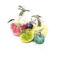 Velvet Pumpkin Large Set with Feathers - Pastel
