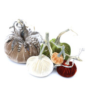 """The Classic LoveFeast Pumpkin Large set with Feathers includes an 8"""" Mocha with feather collar, 6"""" Cactus  , 5"""" Bone , 4"""" Fire , and 3"""" Spice velvet pumpkin."""