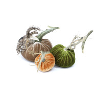 """The Classic LoveFeast Pumpkin Trio with Feathers includes a 6"""" Cactus velvet pumpkin with feather plume, 5"""" Bone velvet pumpkin and 4"""" Fire velvet pumpkin."""