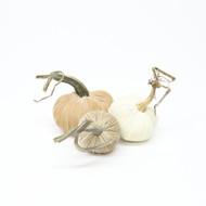 Velvet Pumpkin Trio - Neutral