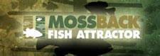 mossbackfish.jpg