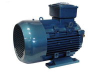 PU55 Electric Motor 5.5HP 415V