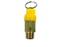 "Safety Valve 2202 1/4"" BSP 1,000KPA"
